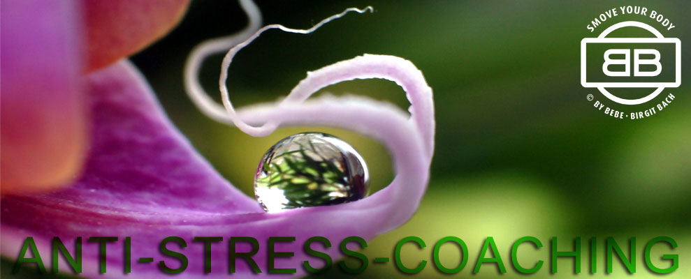 Anti-Stress-Coaching